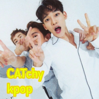 CATchy k-pop
