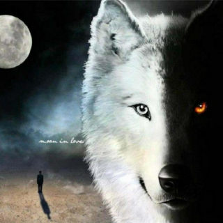 Wolf at Heart