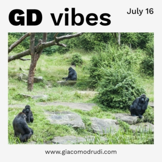 GD Vibes – July 2016