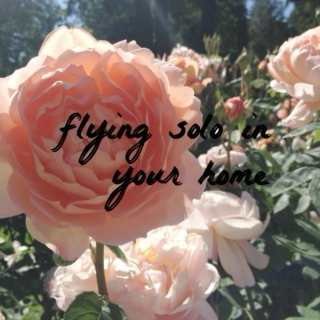 FLYING SOLO IN YOUR HOME