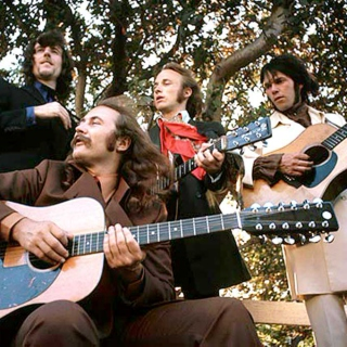 The Continuing Adventures of Crosby, Stills, Nash and Young