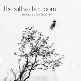 the saltwater room