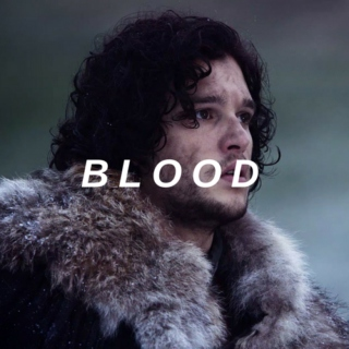 blood - a jon snow mix