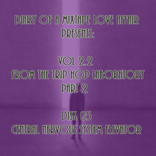 053: Central Nervous System Elevator [From The Trip-Hop Laboratory - Part 2 : Disk 05]