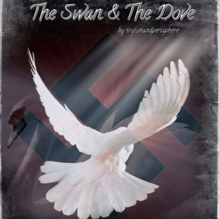The Swan & The Dove