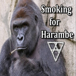 Smoking for Harambe