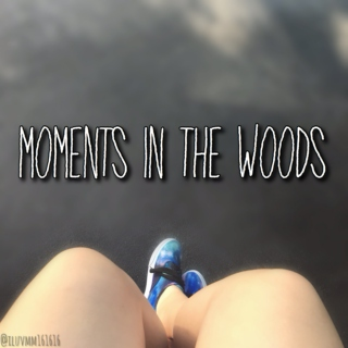Moments in the Woods