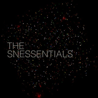 the snessentials