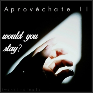 aprovéchate II: would you stay?