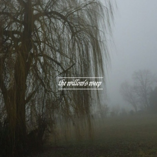 the willow's weep