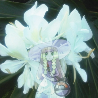 Seed to Bloom; A Lillie Fanmix