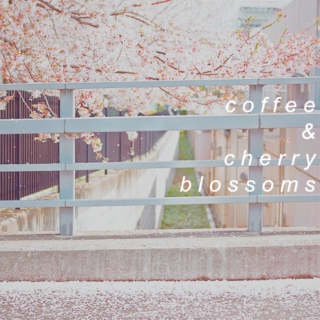 coffee & cherry blossoms