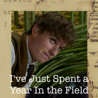 I've Just Spent a Year In the Field