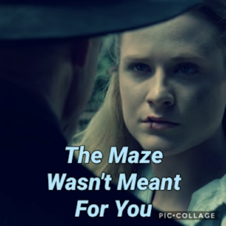 The Maze Wasn't Meant For You