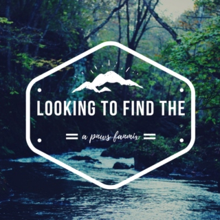 looking to find the