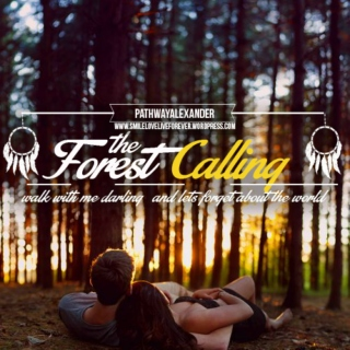 walk with me darling and lets forget about the world, The Forest Calling, INDIE FOLK PLAYLIST