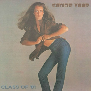 Class Of '81 - Senior Year [Discs 1 & 2]