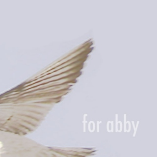 for abby