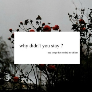 why didn't you stay?