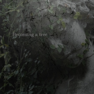 Becoming a tree