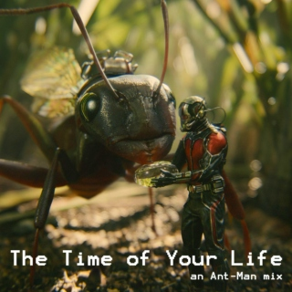 The Time of Your Life