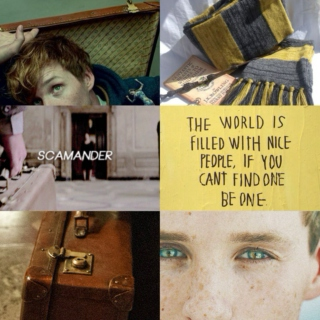 Mad Man with a Box : Newt Scamander