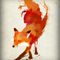 The Fox & The Sound