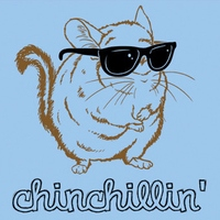chillchinchilla