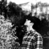 panthershark