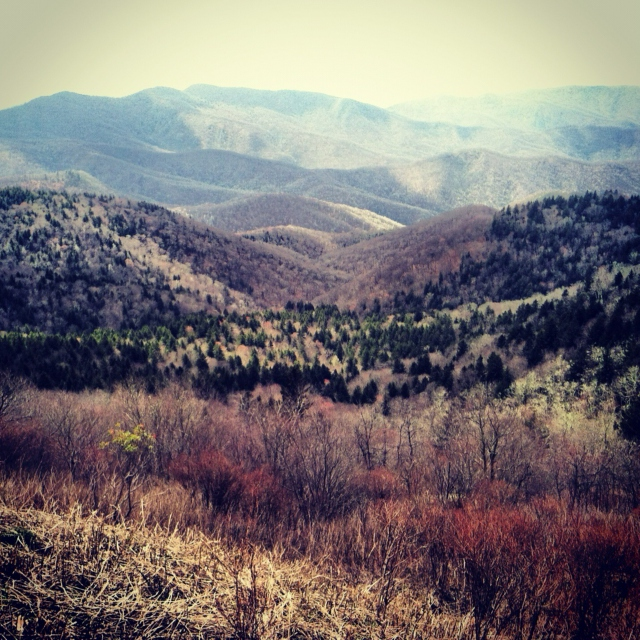 Back In The Mountains