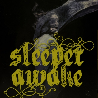 sleeper awake