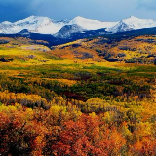 Autumn in Big Sky