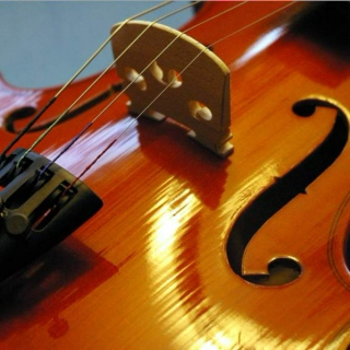 Violins in Carnatic music