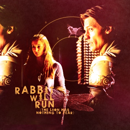 rabbit will run (the lion has nothing to fear)