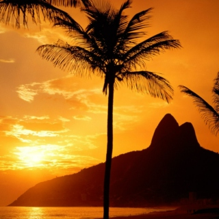 Fall in love with Brasil (bossa nova and axé)