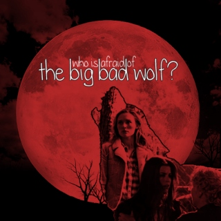 Who is Afraid of the Big Bad Wolf?
