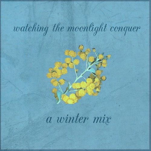 Watching the moonlight conquer - a winter mix