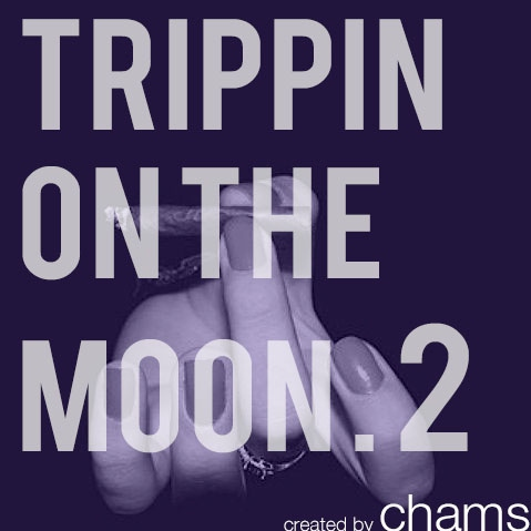 Trippin' on the Moon    Part 2