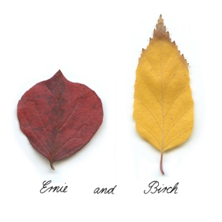 fall, fall, fall; autumn.