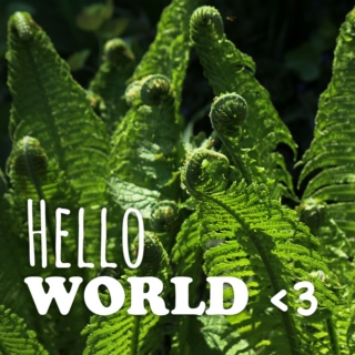 Hello World <3