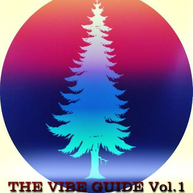 THE VIBE GUIDE Vol. 1