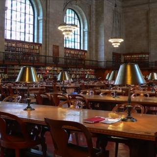 Study Session at the Library II