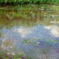 Skylarks and Water Lilies