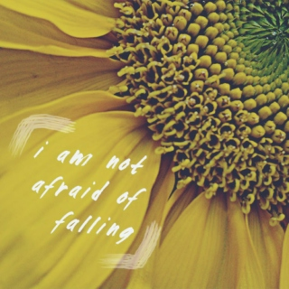 [i am not afraid of falling]