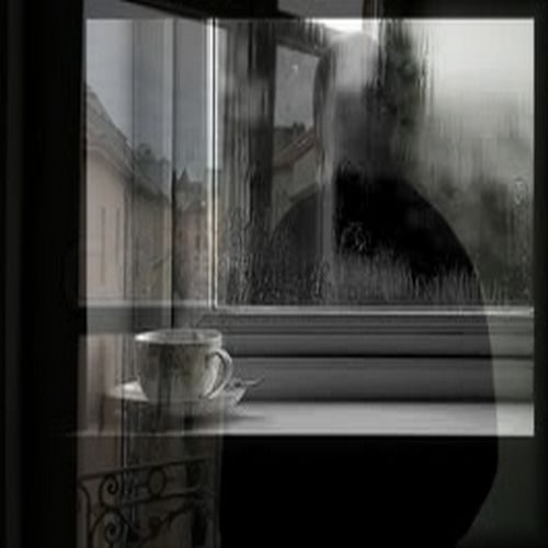 The Fragments of Your Absence (... what you left behind)