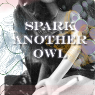Spark Another Owl