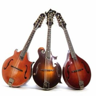 Mandolin, Banjo, Guitar and other instruments (mostly acoustic)