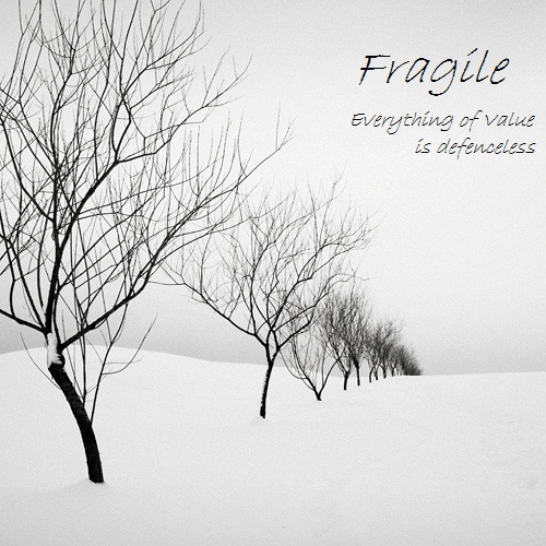 Fragile - Everything of Value is defenceless
