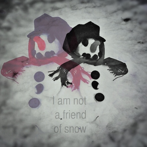 i am not a friend of snow