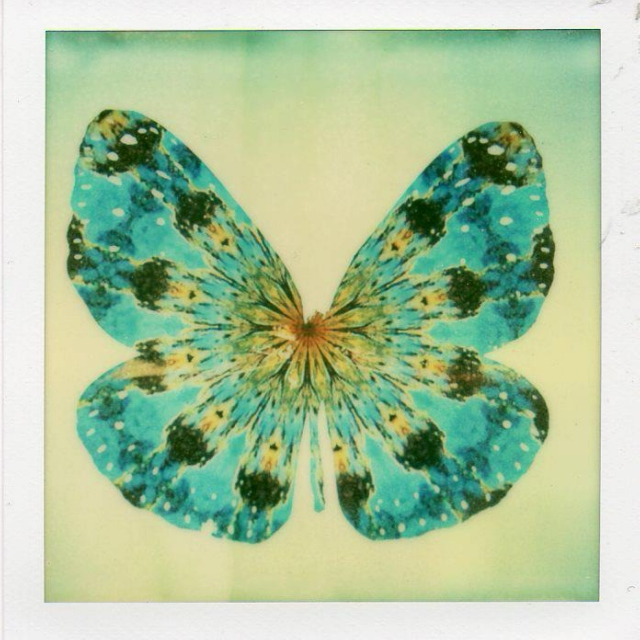 kaleidoscope dreams and butterfly wings